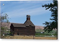 The Iconic Steeple Barn At Donald Acrylic Print by Charles Robinson