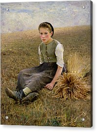 The Little Gleaner Acrylic Print by Hugo Salmson