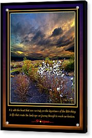 The Little Things Acrylic Print by Phil Koch