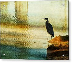 The Lonely Hunter II Acrylic Print by Amy Tyler