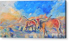 The Longhorns Acrylic Print by Jenn Cunningham