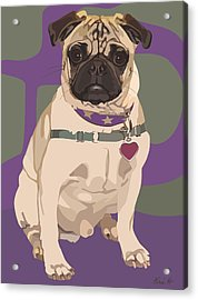 The Love Pug Acrylic Print by Kris Hackleman
