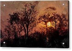 The Madness Of Twilight Acrylic Print by Mark Denham