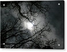 The Moon Prevails  Acrylic Print by Angie Wingerd