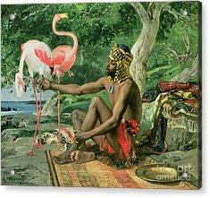 The Nubian Acrylic Print by Georgio Marcelli