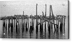 The Old Cedar Key Pier Acrylic Print by David Lee Thompson