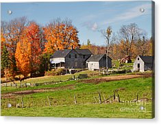 The Old Farm In Autumn Acrylic Print by Louise Heusinkveld