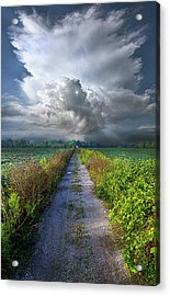 The Only Way In Acrylic Print by Phil Koch