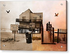 The Osprey And The Pelican Acrylic Print by Betsy Knapp