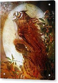 The Owl Acrylic Print by Mary Hood