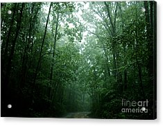 The Path Ahead Acrylic Print by Clayton Bruster