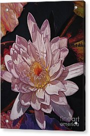 The Perfect Lily Acrylic Print by Melissa Tobia