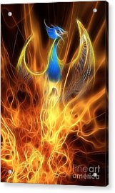 The Phoenix Rises From The Ashes Acrylic Print by John Edwards