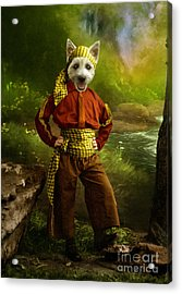 The Pirate Acrylic Print by Martine Roch