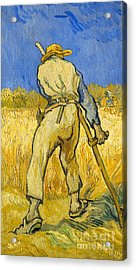 The Reaper Acrylic Print by Vincent van Gogh