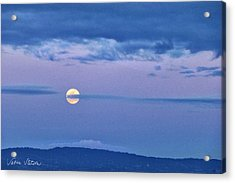 The Rising Acrylic Print by Sabine Stetson