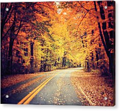 The Road Less Traveled Acrylic Print by Lisa Russo