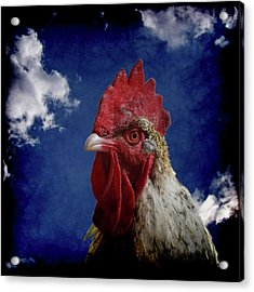 The Rooster Acrylic Print by Ernie Echols