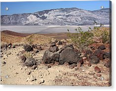The Salt Flats Of Death Valley Acrylic Print by Christine Till