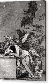The Sleep Of Reason Produces Monsters Acrylic Print by Goya
