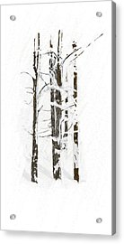 The Snow Just Won't Stop Acrylic Print by Angela A Stanton