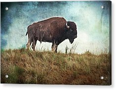 The Stance Acrylic Print by Tamyra Ayles