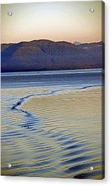 The Waves Acrylic Print by Carol  Eliassen