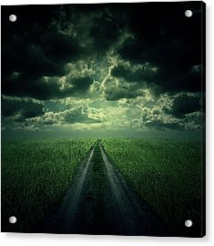 The Way Acrylic Print by Zoltan Toth