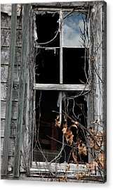 The Window Acrylic Print by Amanda Barcon