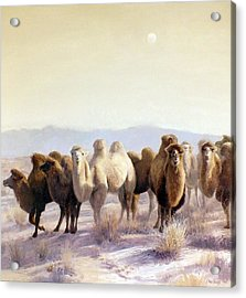 The Winter Solstice Acrylic Print by Chen Baoyi