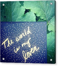 The World Is My Lover Acrylic Print by Tiny Affirmations