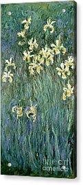 The Yellow Irises Acrylic Print by Claude Monet