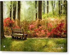 The You You Used To Be Acrylic Print by Lois Bryan