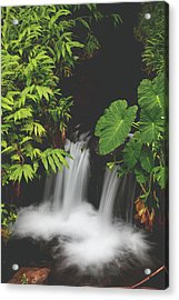 Then Sings My Soul Acrylic Print by Laurie Search