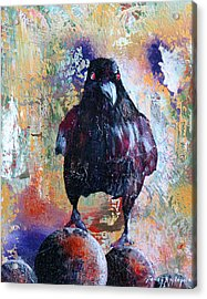 This Ebony  Bird Acrylic Print by Sandy Applegate