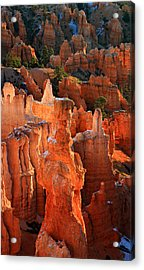 Thor's Hammer At Sunrise In Bryce Canyon Acrylic Print by Pierre Leclerc Photography