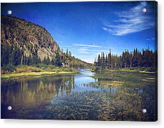 Those Summer Days Acrylic Print by Laurie Search