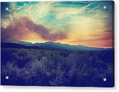 Thought I'd Won Your Heart Acrylic Print by Laurie Search