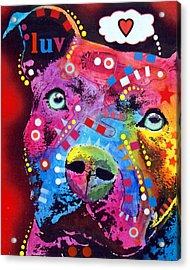 Thoughtful Pitbull Thinks Luv Acrylic Print by Dean Russo