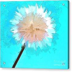 Thoughtful Wish Acrylic Print by Krissy Katsimbras