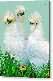 Three Silky Ladies Acrylic Print by Jane Schnetlage