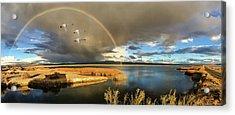 Three Tundra Swans And A Rainbow Acrylic Print by John Williams