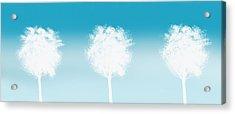 Three White Trees Acrylic Print by Art Spectrum