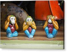 Three Wise Monkeys Acrylic Print by Tim Gainey