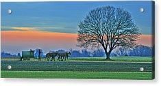 Through The Fields Acrylic Print by Scott Mahon