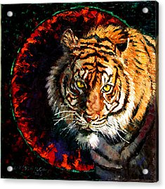 Through The Ring Of Fire Acrylic Print by John Lautermilch