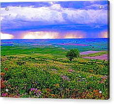 Thunderstorm Over The Palouse Acrylic Print by Margaret Hood