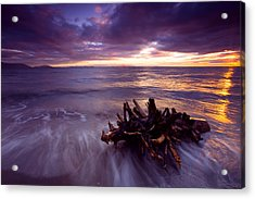 Tide Driven Acrylic Print by Mike  Dawson