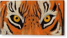 Tiger Eyes Acrylic Print by Anastasiya Malakhova