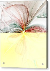 Tiger Lily Acrylic Print by Amanda Moore